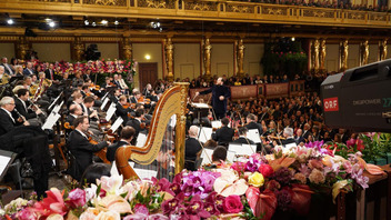 Vienna Philharmonic Orchestra New Year's Concert